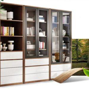 Tủ đựng hồ sơn văn phòng TGC06 được nhiều khách hàng lựa chọn sử dụng.