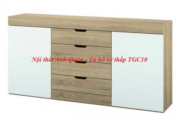 Tủ hồ sơ thấp TGC10 được yêu thích