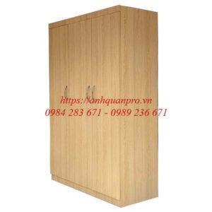 Tủ quần áo giá rẻ TGCN22 -2